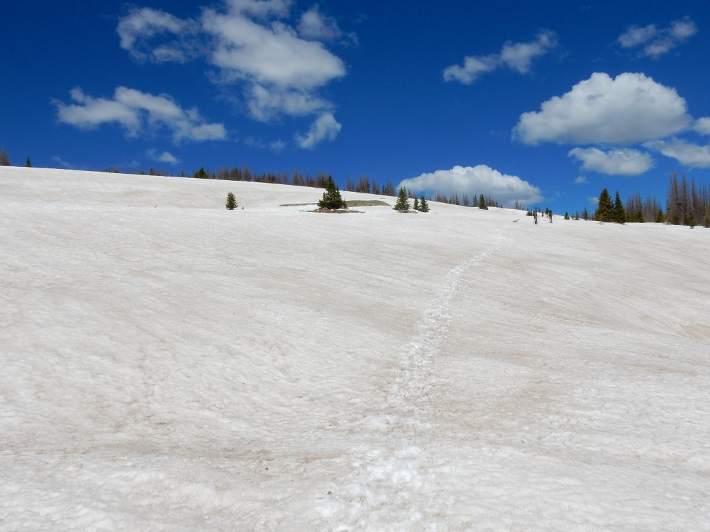 This is terrain where snowshoes helped a lot